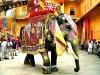 Экскурсионные туры в Индию: цены 2019