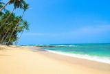 Лучшее Шри Ланки + Восточное побережье
